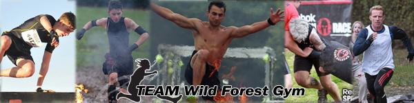TEAM Wild Forest Gym
