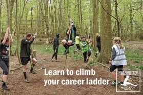 climbing your career ladder